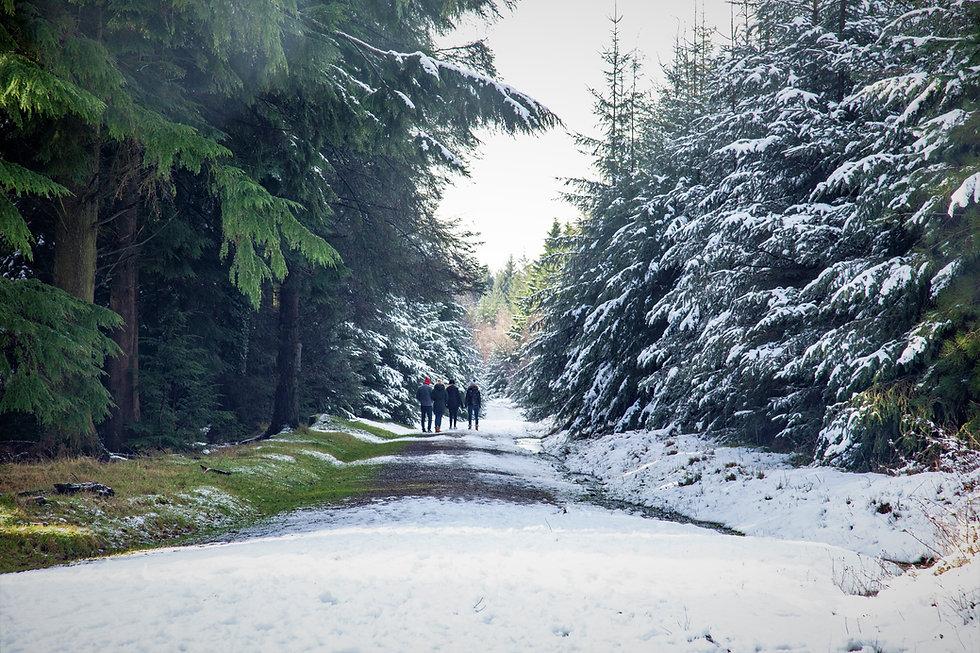 Haldon Lodge with SNOW_21-01-24_0023.jpg