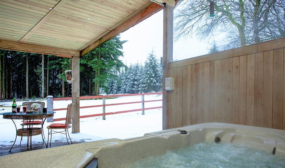 Haldon Lodge with SNOW_21-01-24_0019.jpg