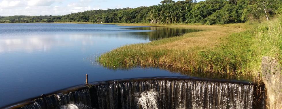 Pantanal Alagoano