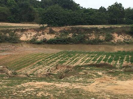 Rice Paddys _#RCV Mission Trip 2017__Rem