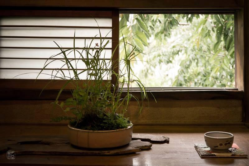 昭和三十年代までは染色で盛んだった妙正寺川