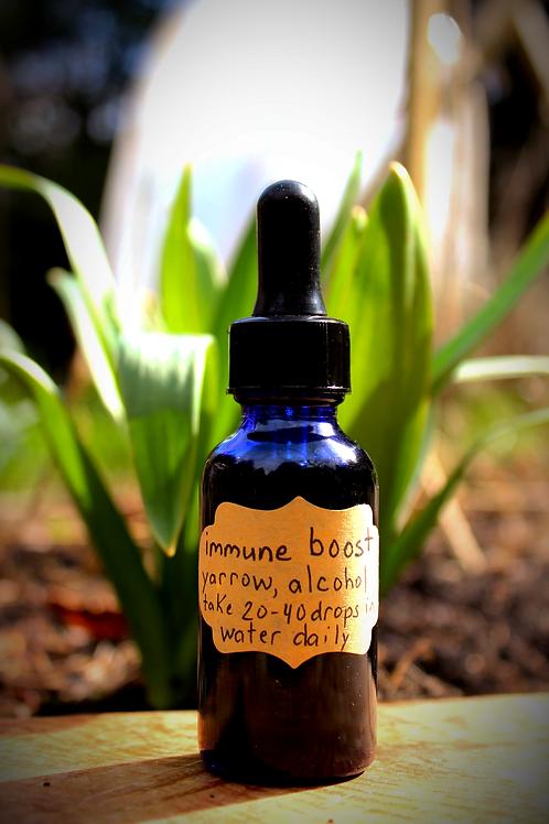 Immune Boost Tincture