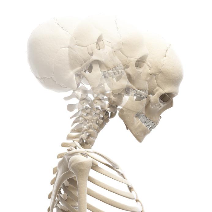 ostéopathe saint nazaire ; osteopathe saint nazaire 44600 ; kiné ostéopathe saint nazaire ; ostéopathe saint nazaire avis ; ostéopathe saint nazaire pages jaunes ; ostéopathe saint nazaire doctolib ; osteopathe saint nazaire 44 ; medecin osteopathe saint nazaire ; ostéopathe à st nazaire ; ostéopathe à saint-nazaire ; avis ostéopathe saint nazaire ; kinésithérapeute ostéopathe saint nazaire ; osteopathe du sport saint nazaire ; cabinet ostéopathe saint nazaire ; kine osteopathe a saint nazaire ; bon ostéopathe saint nazaire ; osteopathe sport saint nazaire ; ostéopathe a saint nazaire ; ostéopathe 44 ; ostéopathe 44600 ; ostéopathe guerande 44 ; doctolib ostéopathe 44 ; osteopathe saint nazaire 44 ; ostéopathe du sport 44 - cédric de tombeur ; osteopathe du sport 44 ; kine osteopathe 44 ; ostéopathe 44550 ; medecin osteopathe 44 ; meilleur ostéopathe 44 ; ostéopathe la baule ; ostéopathe la baule 44500 ; kiné-ostéopathe la baule ; ostéopathe la baule les pins ; ostéopathe la baule escoublac ; ostéopathe la baule avenue de lattre ; ostéopathe à la baule ; ostéopathe du sport ; sport apres seance osteopathie ; ostéopathe et sport ; ostéopathe du sport 44 ; ostéopathe saint-nazaire cédric de tombeur ; ostéopathe sport après ; ostéopathe sportif etude ; ostéopathe du sport nantes ; ostéopathe sport doctolib ; osteopathe du sport metier ; comment devenir ostéopathe du sport ; ostéopathe du sport 44 - cédric de tombeur ; osteopathe du sport saint nazaire ; ostéopathe du sport & kinésithérapeute ; ostéopathe du sport etude ; osteopathe sport saint herblain ; ostéopathe faire du sport ; ostéopathe pour sport ; kiné ostéopathe du sport ; ostéopathe du sport formation ; ostéopathe sportif nantes ; osteopathe du sport 44 ; ostéopathe et médecin du sport ; recherche ostéopathe du sport ; doctolib ; doctolib pro ; doctolib pour rendez vous ; doctolib osteo ; doctolib saint nazaire ; doctolib st nazaire ; doctolib.fr saint nazaire ; doctolib ostéopathe saint nazaire ; doctolib me