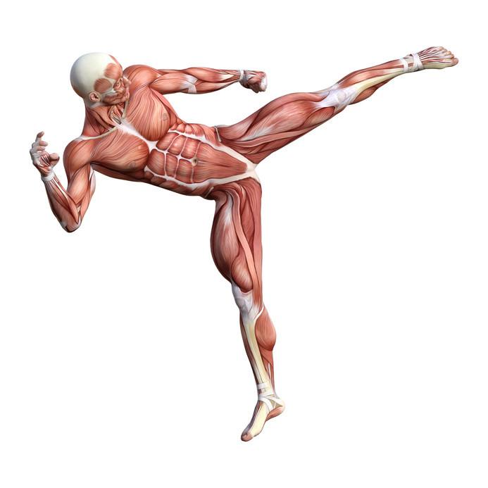 ostéopathe du sport ; sport apres seance osteopathie ; ostéopathe et sport ; ostéopathe du sport 44 ; ostéopathe saint-nazaire cédric de tombeur ; ostéopathe sport après ; ostéopathe sportif etude ; ostéopathe du sport nantes ; ostéopathe sport doctolib ; osteopathe du sport metier ; comment devenir ostéopathe du sport ; ostéopathe du sport 44 - cédric de tombeur ; osteopathe du sport saint nazaire ; ostéopathe du sport & kinésithérapeute ; ostéopathe du sport etude ; osteopathe sport saint herblain ; ostéopathe faire du sport ; ostéopathe pour sport ; kiné ostéopathe du sport ; ostéopathe du sport formation ; ostéopathe sportif nantes ; osteopathe du sport 44 ; ostéopathe et médecin du sport ; recherche ostéopathe du sport