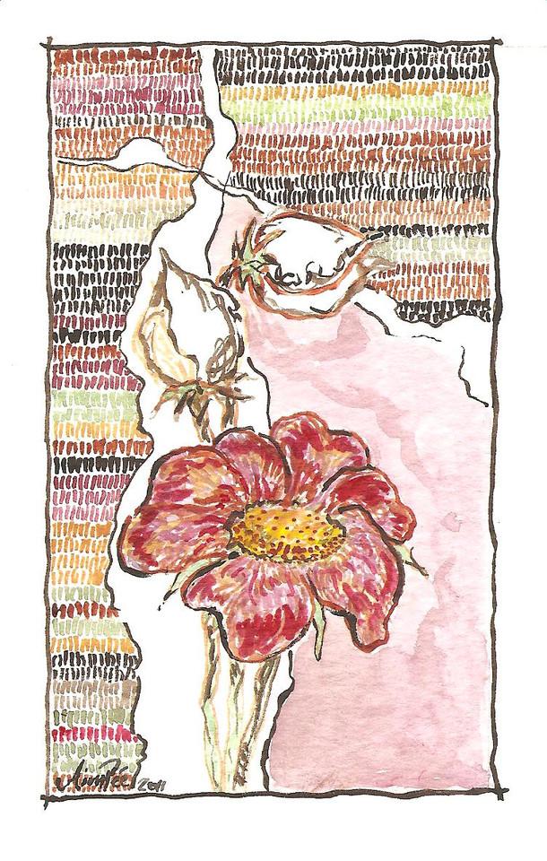 Fleur et boutons