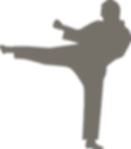 karate-3615008_960_720_edited.png
