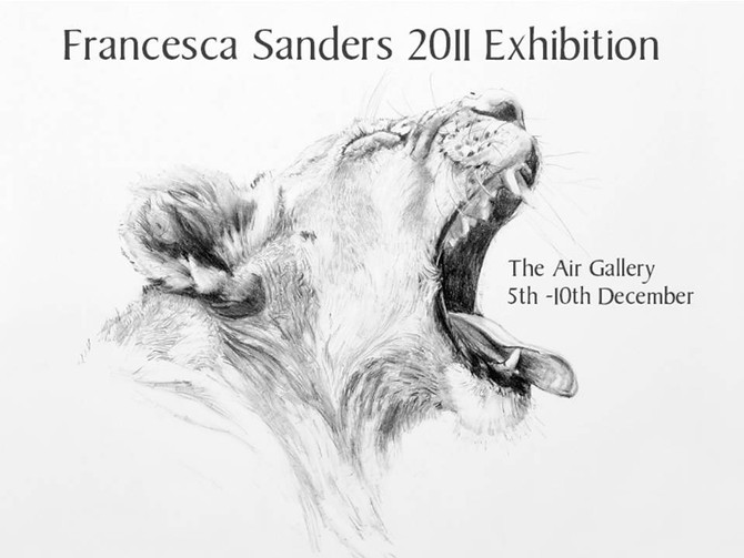 SOLO EXHIBITION DECEMBER 2011, THE AIR GALLERY, LONDON