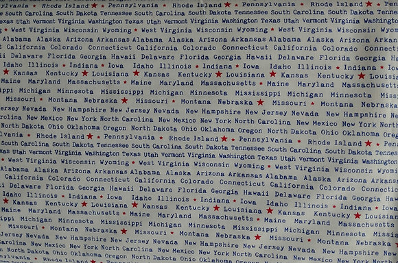 One Land, One Flag State Names fabric by the yard