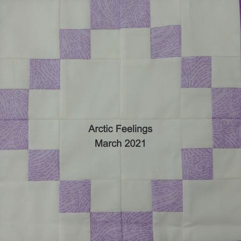Arctic Feelings - January 2021 (block 11)