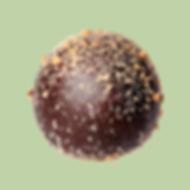 Truffle.M.png