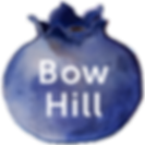 bow hill logo.png