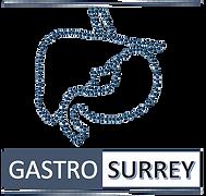 logo gastro-surrey 2.png