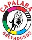 capalaba-greyhounds_logo.jpg