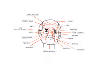 Le Qi-Gong du visage