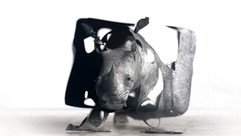 rhino_cube.jpg