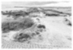 Knokke Dunes.jpg