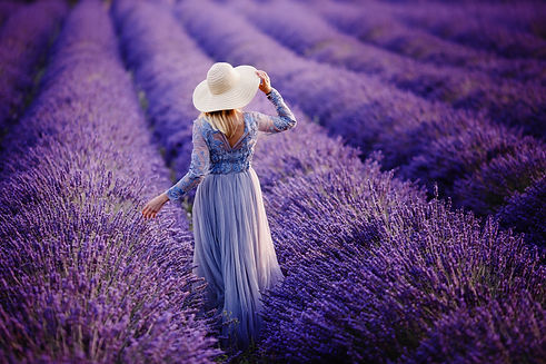 Woman in lavender flowers field at sunse