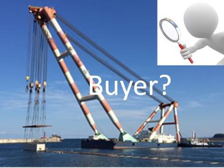 Floating Crane for sales