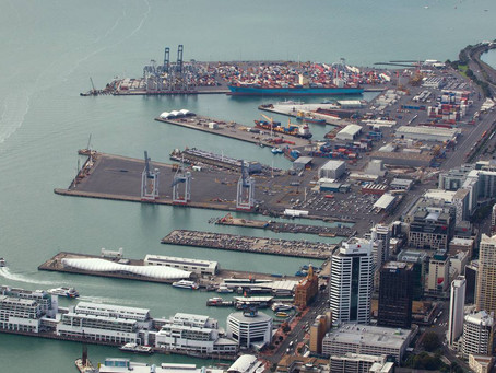 Port congestion, Auckland