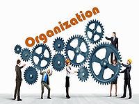 Organization chart.jpeg