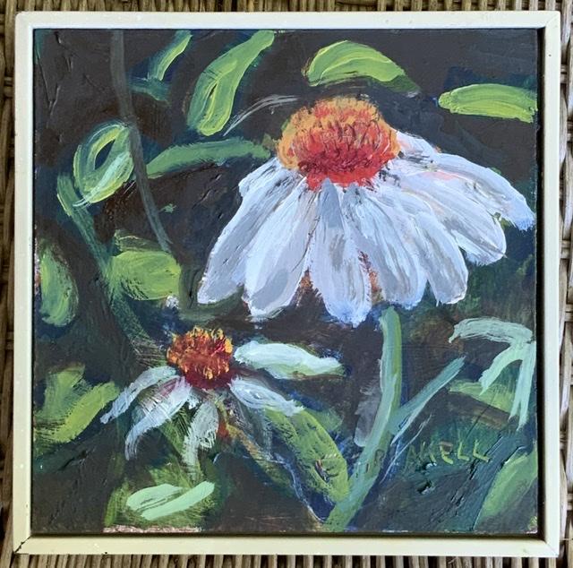 White Cone Flower