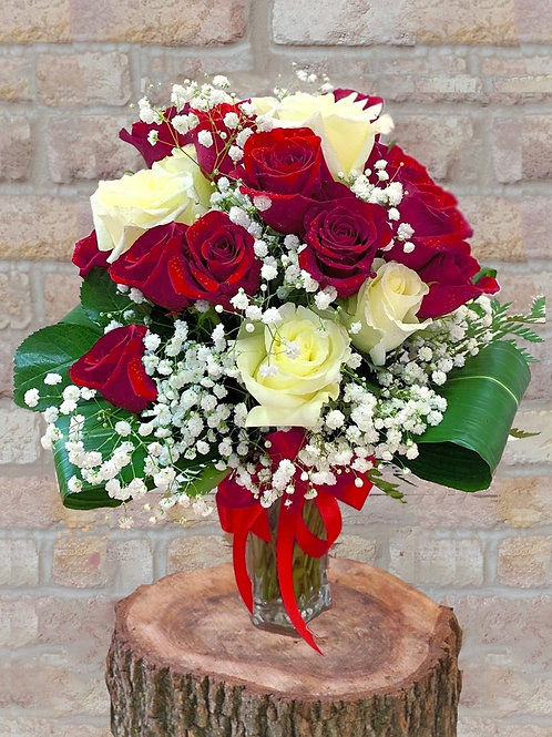 Fresh Red and White Roses