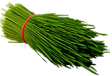 Fresh_Wheatgrass_400-PNG-Web-min.png