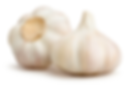 garlic-500x500.png