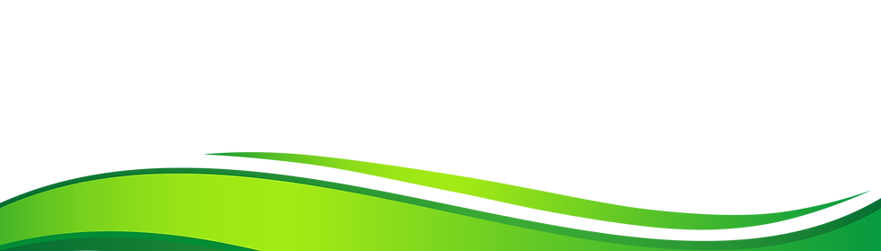 green-wave-png.png