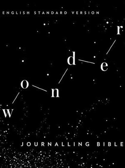 ESV Wonder Journaling Bible Softback Fabric Wonder Design Cover