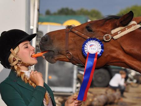 Resource Roundup: Horse Show Hacks