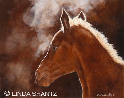 Real People Profile: Linda Shantz