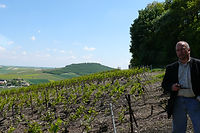 Coteaux Parcelle Vigne Queue du Loup Bergeres Naveau