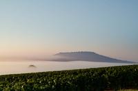 Mont Aime Bergeres Naveau Fog Climate Climat