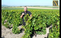 Christian in the vineyard Naveau Best champagne