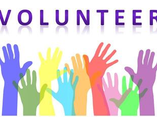 We are Looking for Fabulous Volunteers!