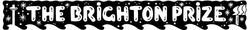 Brighton Prize logo new 2017