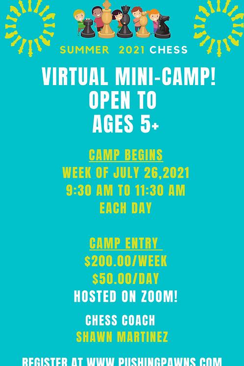 SUMMER MINI CAMP WEEK
