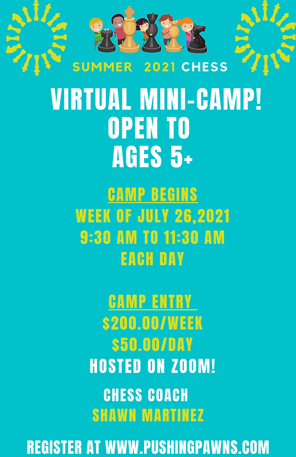summer mini camp 2021.png