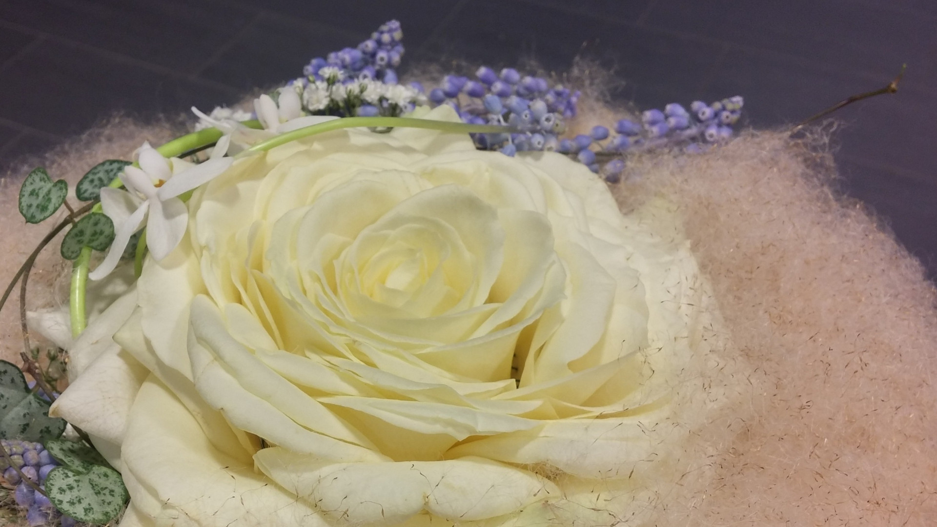 For Bride, morsiamelle.