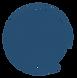 tbc swish logo blue.png