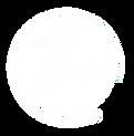tbc swish logo white.png