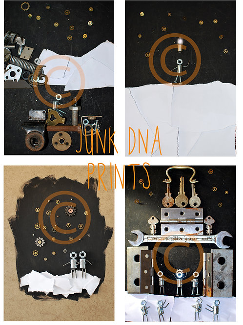 Junk dna Prints X4