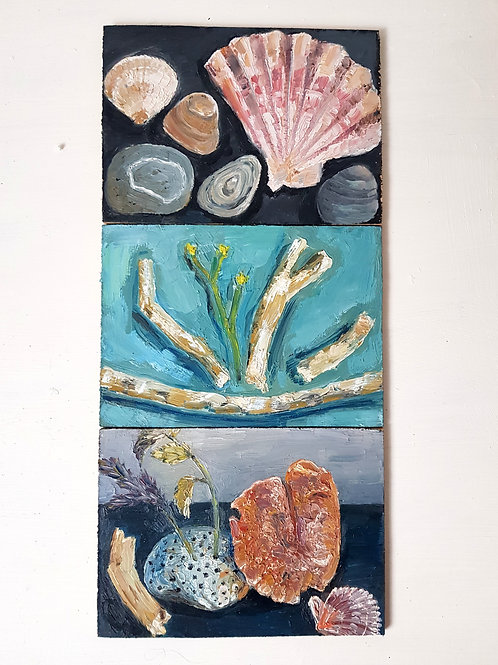 3x A6 Oil Painting studies- Sea Treasures Triptych