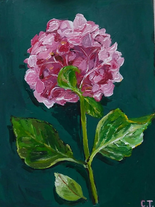 A5 Acrylic on board Hydrangea Painting (SOLD)