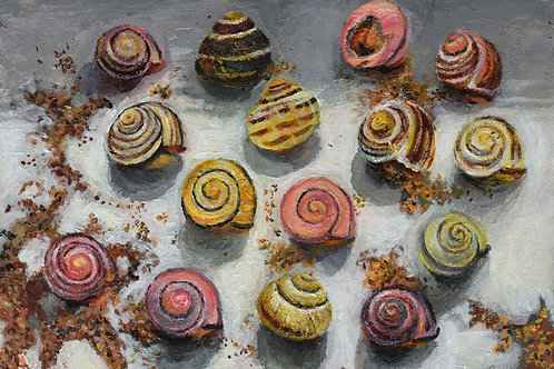 A6 detailed Snail Shell Painting (SOLD)