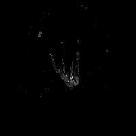 Logo Anja Bloow.png