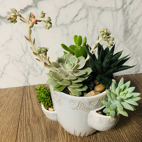 Strawberry Pot Succulent Garden