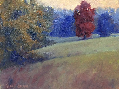 """Wesleyan Oak at Sunset"" by Daly Smith"