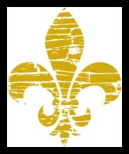 Louisiana State Treasurer icon